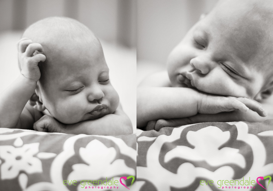 palm beach baby photography